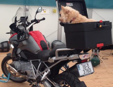 About   Motorcycle Rental